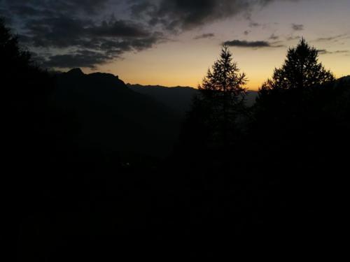 JV Ausflug 2018 Rosswald (11)